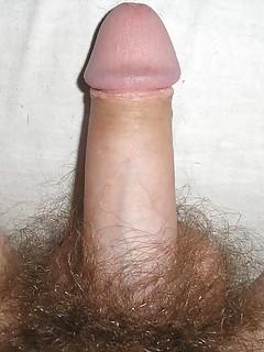 Hairy Gay Cock Porn